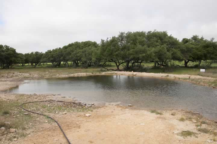 Earthen Pond