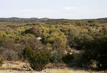 581.3 +/- Acres in Southern Edwards County